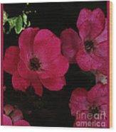 Moonlight Roses Wood Print