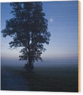 Moonlit Dawn Wood Print