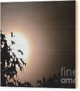 Moonlit Oak Wood Print