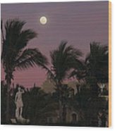 Moonlit Resort Wood Print