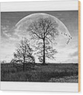 Moonlit Silhouette Wood Print