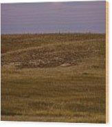 Moonrise Over Badlands South Dakota Wood Print