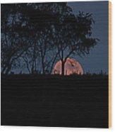 Moonscape Wood Print
