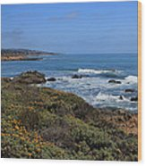 Moonstone Beach Wood Print by Heidi Smith