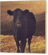 Moooo Cow  Wood Print