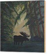 Moose Pond Hideout Wood Print