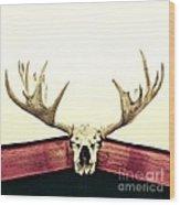 Moose Trophy Wood Print