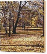 More Fall Trees Wood Print