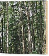 More Platte Wood Print