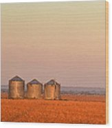 Morning At The Farm Watercolor Photoart Wood Print