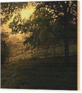 Morning Breaks Softly Wood Print
