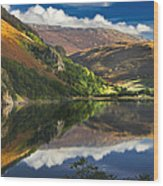 morning by Llyn Gwynant Wood Print