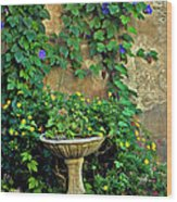 Morning Glory Garden In Provence Wood Print