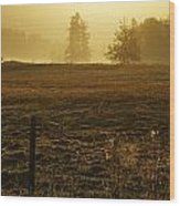 Morning Glow Wood Print by Terrie Taylor