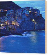 Morning In Manarola Wood Print by Barbara Walsh