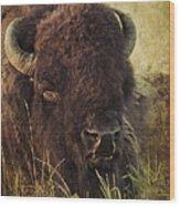 Morning In The Prairie Wood Print