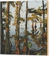 Morning In The Swamps Wood Print
