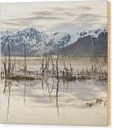 Morning Mist At Twenty Mile Wood Print by Tim Grams