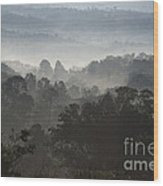 Morning Mist In Panama's Highlands Wood Print