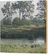 Morning Mist On Marsh Wood Print