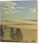Morning Mist Over Trees, New Glasgow Wood Print