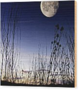 Morning Moonscape Wood Print