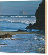 Morro Bay Shoreline II Wood Print by Steven Ainsworth