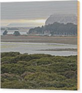 Morro Rock From The Elfin Forest Wood Print