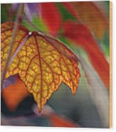 Mosaic Autumn Wood Print