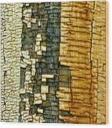 Mosaic Of Time Wood Print