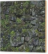 Moss And Stone Wood Print