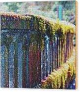 Moss Covered Bridge Wood Print
