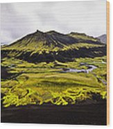 Moss In Iceland Wood Print