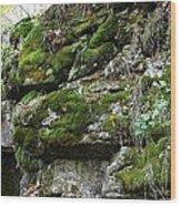 Moss N Rock Wood Print