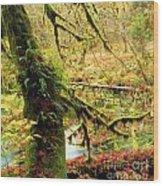 Mossy Bend Wood Print
