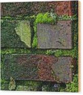 Mossy Brick Wall Wood Print
