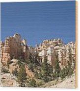 Mossy Cave Trail Wood Print