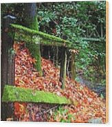 Mossy Fence Wood Print