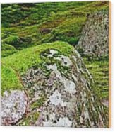 Mossy Rock Garden Wood Print
