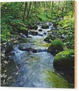 Mossy Rocks And Water   Wood Print