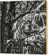 Mossy Trees In Black And White 2 Wood Print