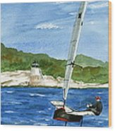 Moth Sailing At Castle Hill Light Wood Print