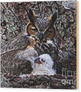 Mother And Baby Owl Wood Print