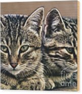 Mother And Child Wild Cats Wood Print