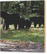 Mother Bear And Three Cubs Wood Print