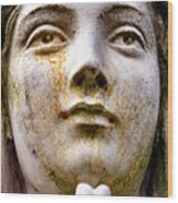 Mother Mary Wood Print