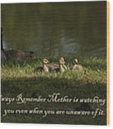 Mother's Watchful Eye Wood Print by Kathy Clark