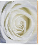 Mother's White Rose Wood Print
