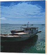 Motor Boats Docked At The Pier Wood Print