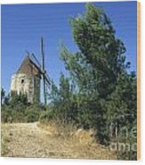 Moulin Of Daudet. Fontvieille. Provence Wood Print